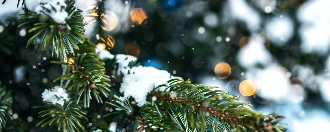 Een nieuwe betekenis van het kerstfeest