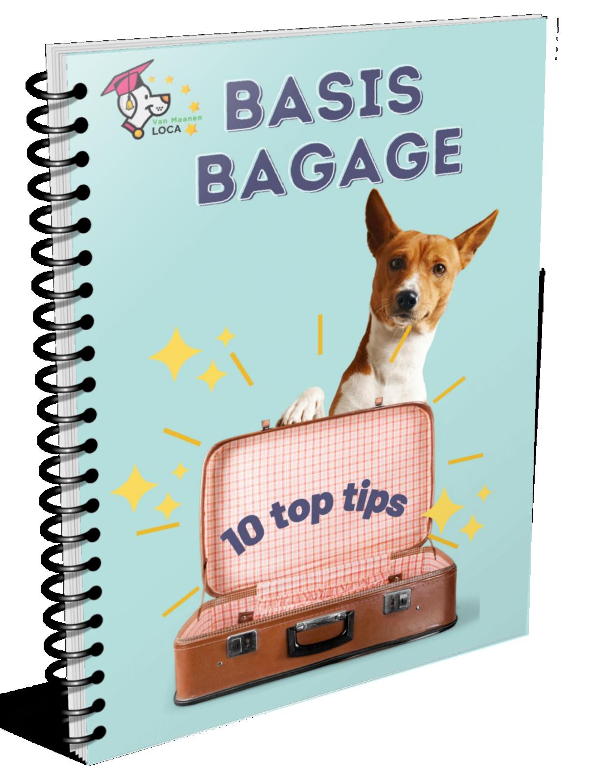basis bagage online honden cursus