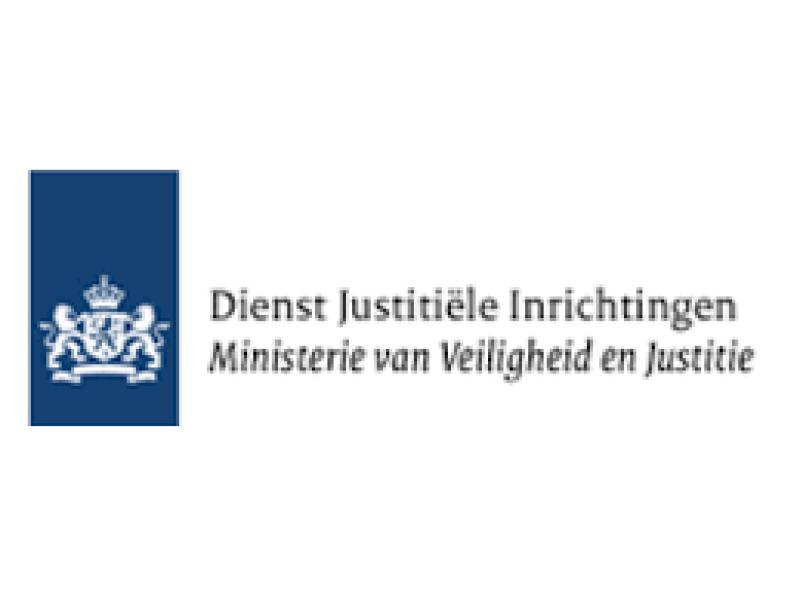 DJI Dienst Justitiele Inrichtingen - Vermoogen - Talentontwikkeling - Succesvolle teams werken vanuit hun talenten