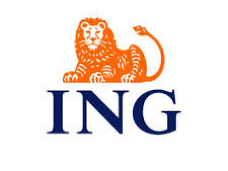 ING bank - Vermoogen - Talentontwikkeling - Succesvolle teams werken vanuit hun talenten
