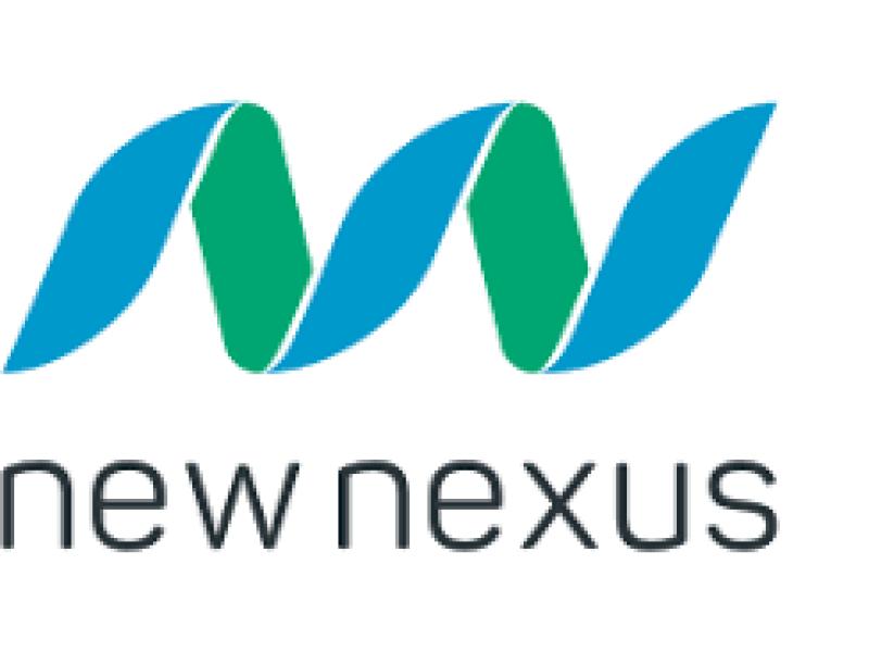 New Nexus - Vermoogen - Talentontwikkeling - Succesvolle teams werken vanuit hun talenten
