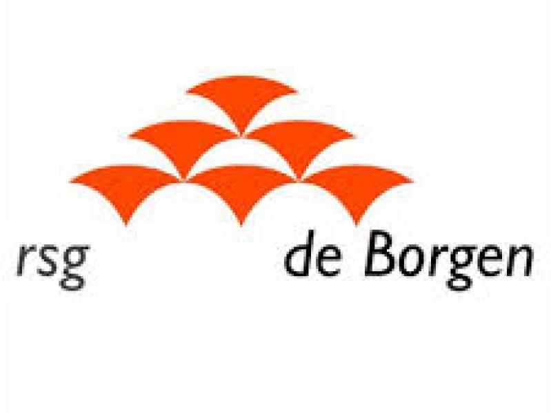 RSG de Borgen - Vermoogen - Talentontwikkeling - Succesvolle teams werken vanuit hun talenten