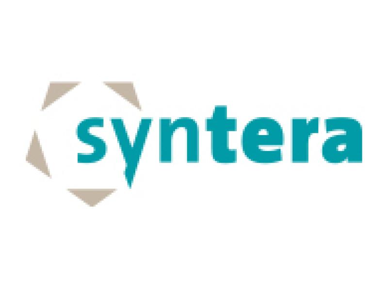 Syntera - Vermoogen - Talentontwikkeling - Succesvolle teams werken vanuit hun talenten