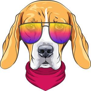 gekleurde bril