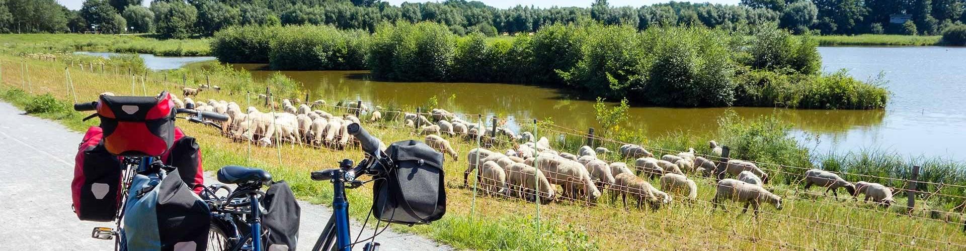Unieke wandelvakantie in Hongarije