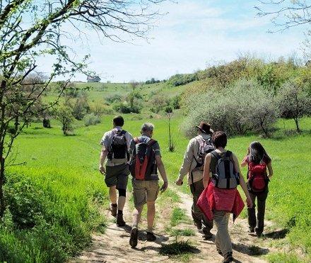 Individuele dagwandelingen in Hongarije
