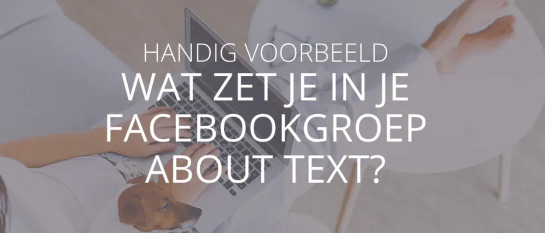 Wat zet je in de omschrijving van je Facebookgroep?