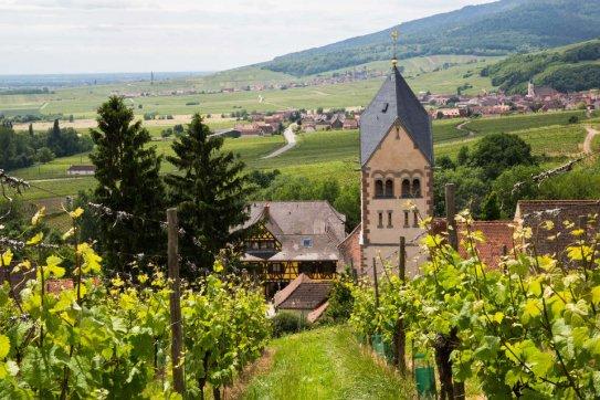Wijnreis Bordeaux