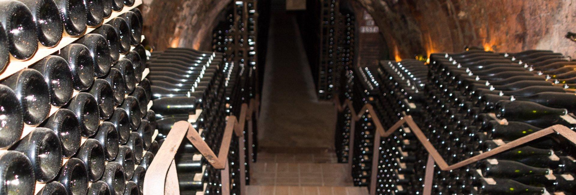 Penèdes wijngebied