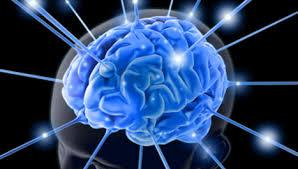 BrainBoost Powerbox