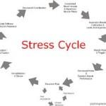 Leren omgaan met stress!