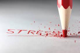 Leer omgaan met stress bij Wout Plevier