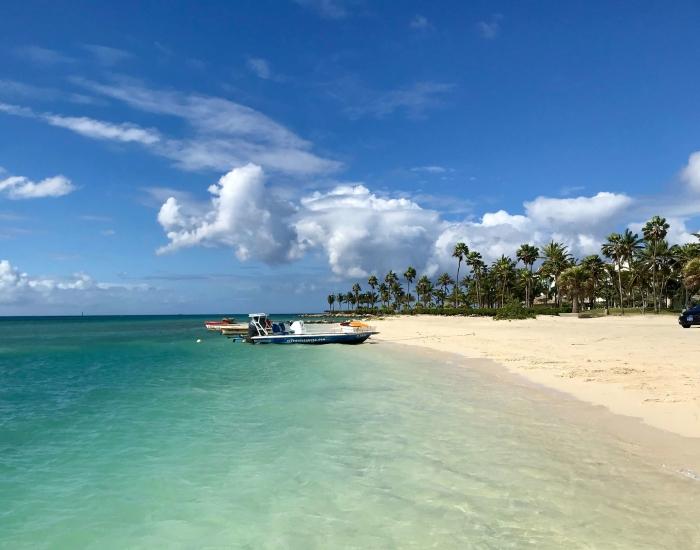 Alles over Aruba