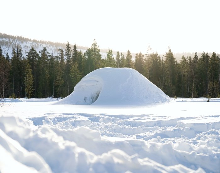 Wat kun je doen in Lapland?