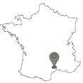 De top 10 grootste steden van Frankijk: Montpellier
