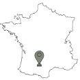 De top 10 grootste steden van Frankijk: Toulouse