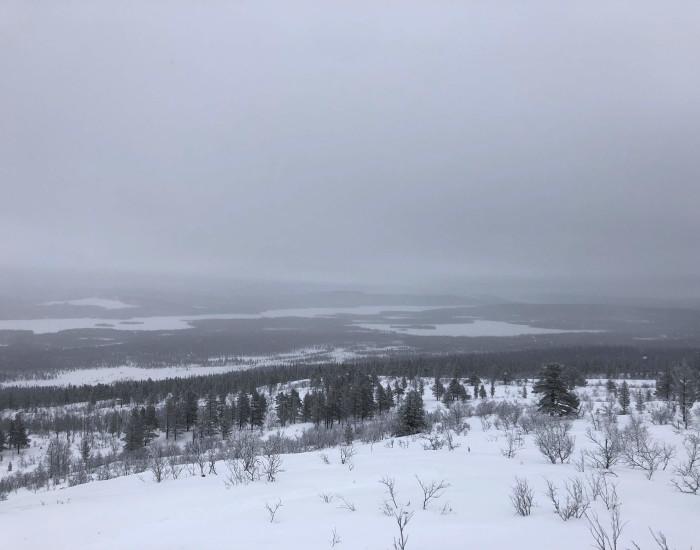 Sneeuwschoen wandelingen in Lapland