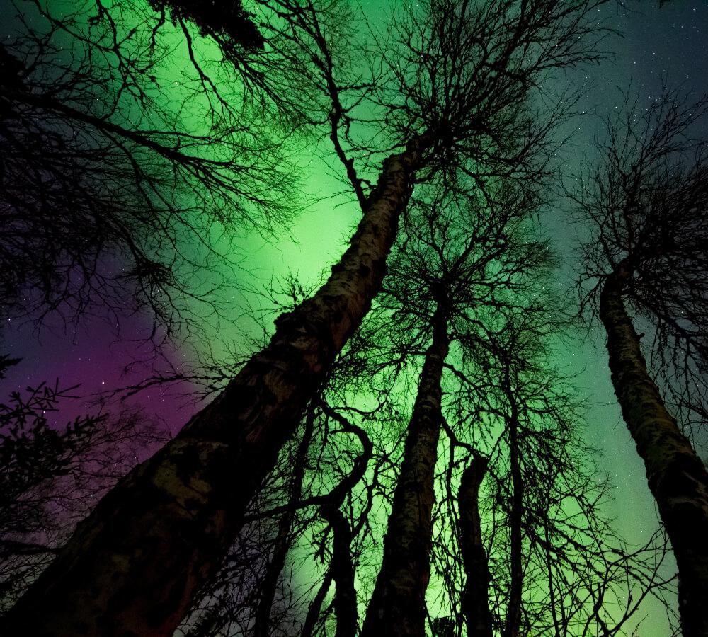 Wanneer is het noorderlicht te zien?