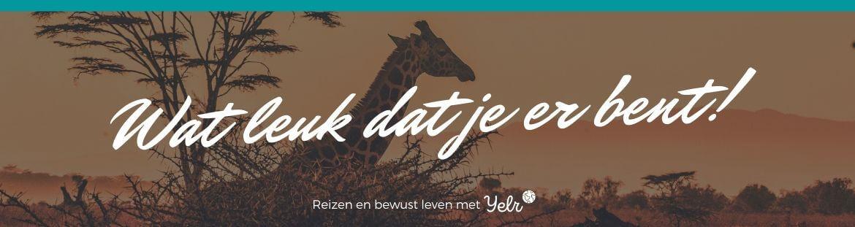 Yelr: het grootste reisplatform van Nederland