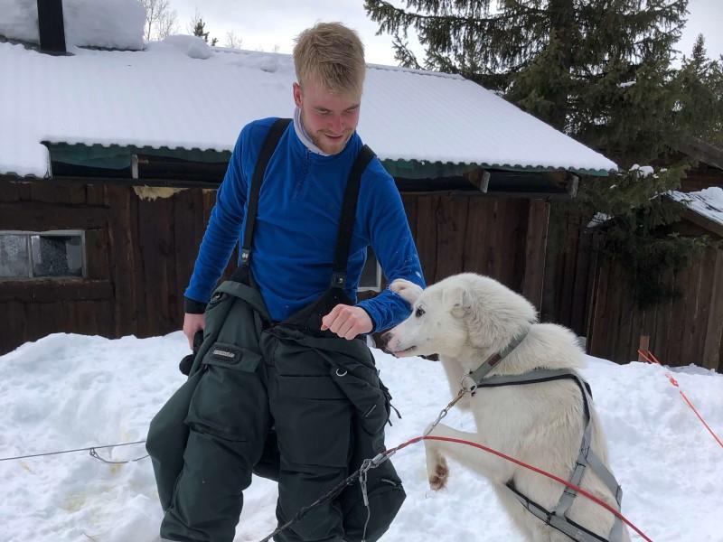 Reizen door Lapland