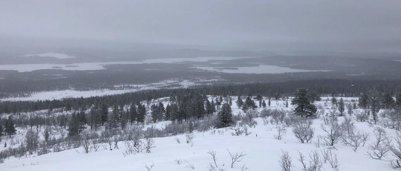 Actief in Lapland: een klim van 700 meter met sneeuwschoenen