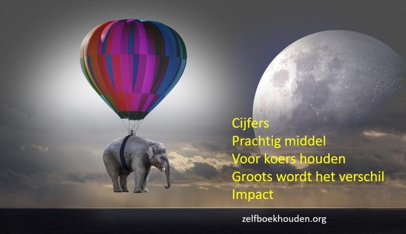 Boekhoudprogramma geeft grip op cijfers door een olifanten aanpak