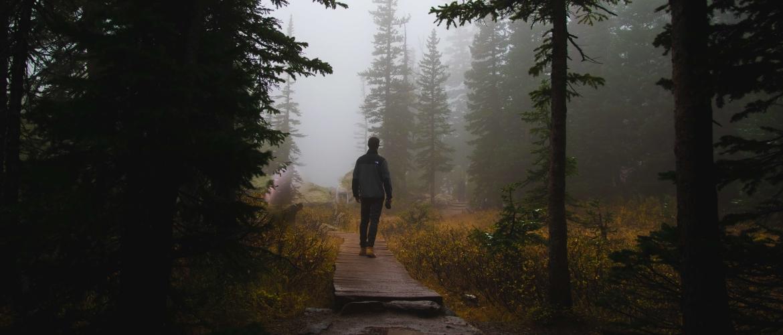 Mindful wandelen: 4 handige oefeningen (+ video)