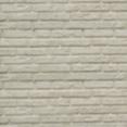 Crème beton: houtbetonschutting of betonschutting