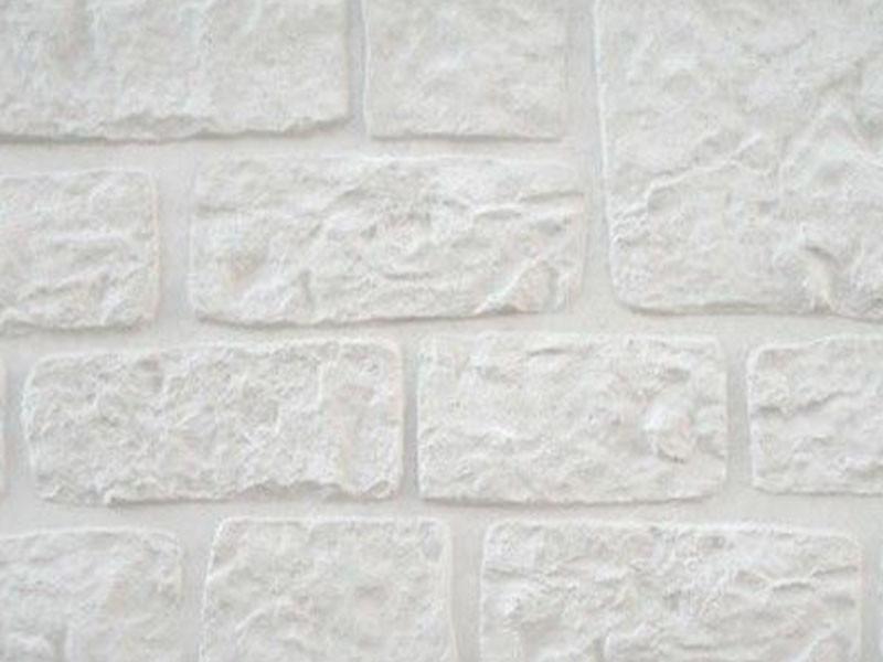 Romeins motief houtbetonschutting, betonschutting of douglas schutting